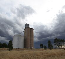 Summer Storm Clouds surround Wheat Silo by Lynton Brown