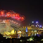 Sydney New Years Fireworks 2010 by Bloomin' Arty