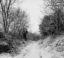 A Snowbound Country lane to nowhere in Norfolk by johnny2sheds