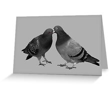 Kissing Pigeons - Glasgow Scotland Greeting Card