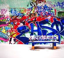 Snow and Graffiti by Tara  Turner