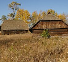 Logbarn and Loghouse by Mowny