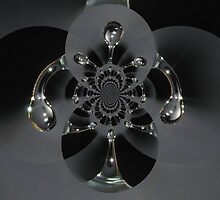 Waterflake  by Anina Arnott