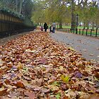 London, Green Park in the Autumn by Anina Arnott