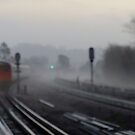 Foggy morning (Arrival) by Themis