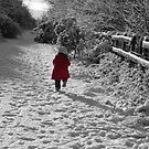 little red coat by rhian mountjoy