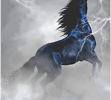 storm bringer by gaylene goodsell