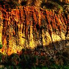 Natures Paintbrush - Loch Ard Gorge - Great Ocean Road - The HDR Experience by Philip Johnson
