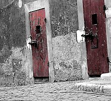 Red Doors by TheRoacH