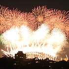 New year fireworks at Sydney harbour bridge by Amit Ambardar