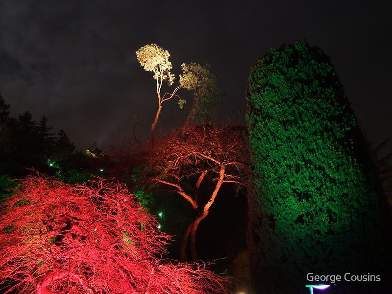 Night in the Sunken Garden(6) by George Cousins