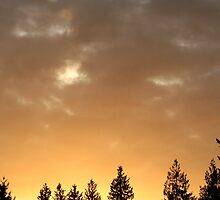 Golden Glow Sky by starlitewonder