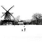 Fabyan Windmill by Brian Gaynor
