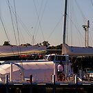 Docked Yacht - Geelong Victoria Australia by Rhonda F.  Taylor