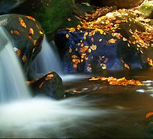 Goldmine Brook Falls by Norman Lathrop