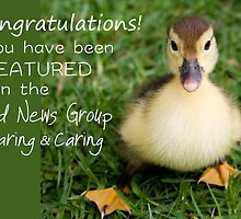Feature Banner for the Good News Group ~Sharing and Caring  by RebeccaDaisey