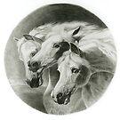 The Pharoah's Horses by Tony Sturtevant