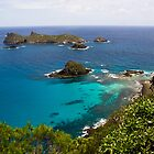 Islands of Lord Howe Island by Bill  Russo