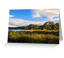 Beach Meadow, Bruny Island Tasmania Greeting Card