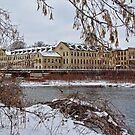 Frozen Appleton by EbelArt