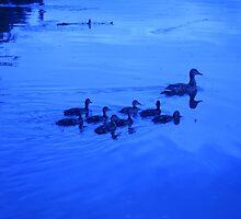 Family bonds - Washington Park - Albany, NY by EllaUnread