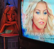 Life In Plastic by James  Birkbeck
