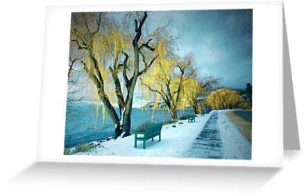 Lakeshore Walkway in Winter by Tara  Turner