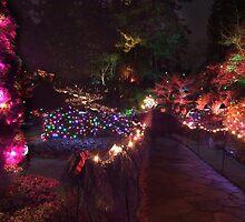 Night in the Sunken Garden (8) by George Cousins