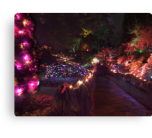 Night in the Sunken Garden (8) Canvas Print