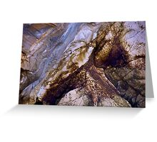 Nature's Art Canvas Greeting Card
