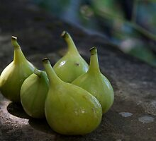 Green Figs by edesigned
