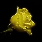 Yellow Rose by Sandy Keeton