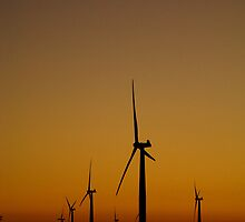 Twilight at the wind farm by Mel Sarovic