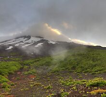 Mount Fuji by James Lyall