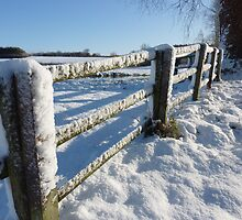 Snow Fence by johnny2sheds