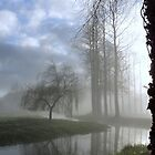 December Mist by the River Wensum in Norfolk by johnny2sheds
