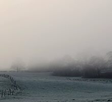foggy Cheshire countryside by angimoo