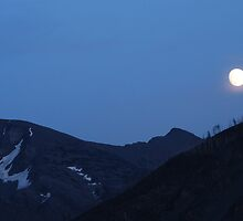 Moonlit evening by mmhoff