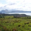 Isle of Raasay by Louise Norman