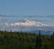 Mt McKinley by KathleenRinker