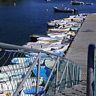 Dinghy Dock in Belfast - Maine by quiltmaker