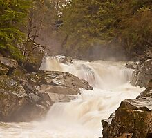 Frothy Granite Falls (Washington State) by Barb White