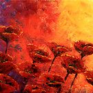 Heavenly Poppies by Abstract D&#x27;Oyley