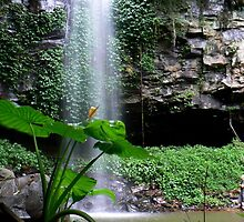 Crystal Falls II by Erin Anderson