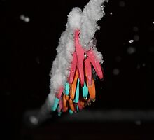 Hanging snow by kez007