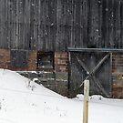 Winter Warmth by Geno Rugh