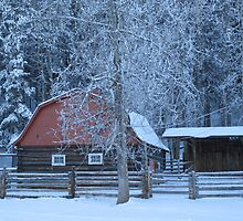 Red barn by CowgirlNicky