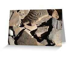 native American,Creek tribe,potsherds,ancient,Florida, Greeting Card