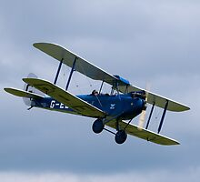 De Havilland DH60 Gipsy Moth Military Trainer by Nigel Bangert