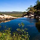 Pond above waterfall, Kakadu, Australia by Bill  Russo